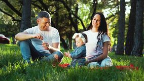 Loving family with baby girl enjoying summer in park blowing soap bubbles. Parents and toddler daughter sitting on green grass. people, family bonding and stock video footage