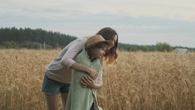 Loving family, older sister caring, playing, looking with younger girl. Field of wheat summer nature background stock video