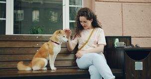 Loving girl feeding adorable shiba inu puppy sitting on bench in outdoors cafe. Loving girl is feeding adorable shiba inu puppy sitting on bench in outdoors cafe stock video