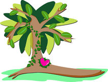 Loving Heart Tree Royalty Free Stock Photos