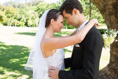 Loving newly wed couple in garden Stock Photography