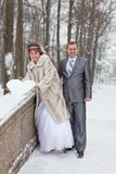 Loving newlywed couple walking in winter park Stock Photography