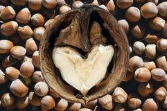 Loving Nuts Stock Photos