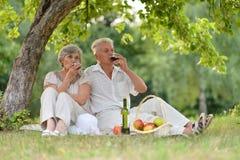 Loving older couple Royalty Free Stock Photo