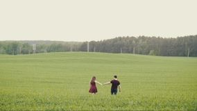 Loving people hold hands and kiss as they walk in an oat field. Happy couple in love. Forest at the background. Slow mo