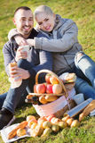 Loving pleasant couple chatting as having picnic. In sunny day stock image