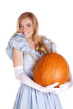 Loving the pumpkin Stock Photography