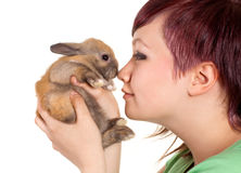 Loving a rabbit Royalty Free Stock Photography