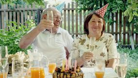 Loving senior couple celebrating anniversary with cake. At backyard in the summer day. They drink champagne, laugh stock video