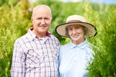 Loving Senior Couple Posing in Garden Together royalty free stock photos