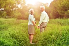 Loving senior couple walking. On green meadow in summer royalty free stock photography