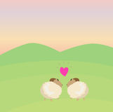 Loving sheeps Stock Photo