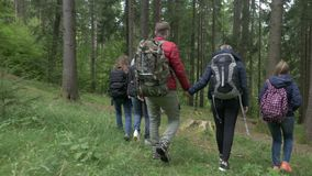 Loving teen couple holding hands walking together through the woods with their friends on hike trekking forest -. Loving teen couple holding hands walking stock video