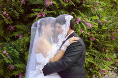 Loving under veil Royalty Free Stock Photos