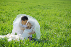 Loving wedding couple Royalty Free Stock Images