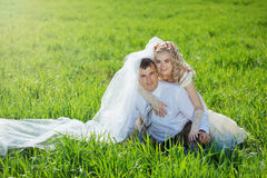Loving wedding couple Royalty Free Stock Photography