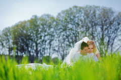 Loving wedding couple Royalty Free Stock Photo