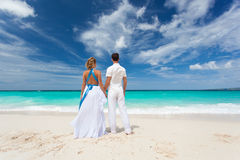 Loving wedding couple on beach Royalty Free Stock Photography