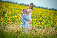 young couple in a field of sunflowers Stock Images