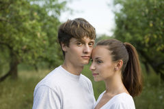 Loving Young Couple In Orchard Stock Images
