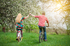 Loving young couple riding bicycles in the spring garden Stock Images