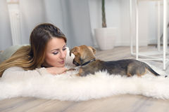 Loving young woman with her little dog Royalty Free Stock Photos