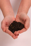 Loving your earth 2. Two hands shaped like a heart holding dirt on a white background stock images
