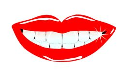 Lovley smile. Vital and beauty human anterior teeth with lovely smiling lips Royalty Free Illustration