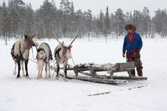 Lovozero, Russia - 8 gennaio 2014, costume nazionale di sami vicino alla renna Fotografia Stock Libera da Diritti