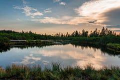 Lovrenska lakes -Slovenia. Lovrenska lakes at sunset - Slovenia royalty free stock photo