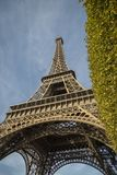 Low angle close up view of the Eiffel Tower, Paris. Low angle close up view of the iconic Eiffel Tower, Paris, France viewed past a green tree looking up in a Stock Photo