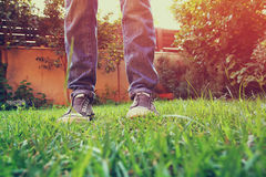 Low angle photo of green grass and person's shoes. selective focus. retro filtered.  Stock Images