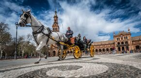 Low Angle Photography People Riding a Carriage Pull by White Horse Near Beige Building during Daytime Royalty Free Stock Images