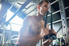 Muscular Man in Gym. Low angle portrait of handsome muscular man using machines for strength training, sweating with effort during  work out in modern gym Royalty Free Stock Photos