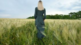 Low angle rear view. A young blonde girl in a loose green dress leisurely walks along a green field of wheat. The. Low angle rear view. A young girl in a loose stock video footage