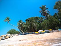 Low angle of Seychelles beach with colorful boats. Rocks, and leaning palm trees Stock Images