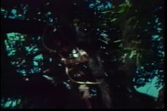 Low angle shot of barbarian shooting a burning arrow from a tree stock video footage