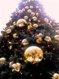 Low Angle Shot of Christmas Tree With Gold-colored Bauble Royalty Free Stock Photography