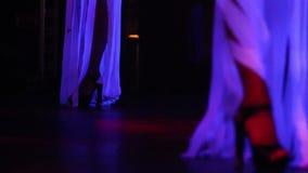 Low angle shot girls dance in night club. Low angle shot girl dancers in glowing costumes dance on stage in modern dark night club stock video