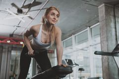 Beautiful young fitness woman working out at the gym stock photos
