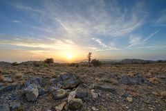 Low angle shot from a sunrise. In the mountains in the Kingdom of Oman at Jabel Akhdar with trees and rocks stock images