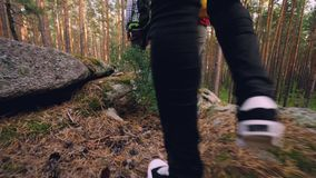 Low angle shot of travelers` legs in sneakers walking in wood exploring new territory stepping on covered with grass and stock video footage