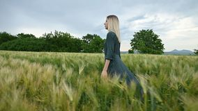 Low angle side view. A young blonde girl in a loose green dress leisurely walks along a green field of wheat. The. Low angle side view. A young girl in a loose stock footage