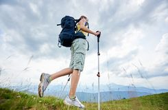 Woman hiker hiking on grassy hill, wearing backpack, using trekking sticks in the mountains. Low angle view of attractive woman hiker hiking in Carpathian stock images