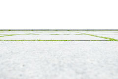 Low angle view of concrete floor with green grass isolated on wh. Ite background Royalty Free Stock Photo