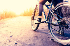 Low angle view of cyclist riding mountain bike Royalty Free Stock Images