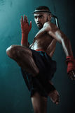 Low angle view of determined Muay thai fighter training thai boxing Royalty Free Stock Photos