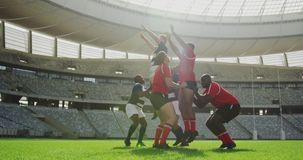 Rugby players playing rugby match in stadium 4k. Low angle view of diverse rugby players playing rugby match in stadium. They are catching rugby ball 4k stock video footage