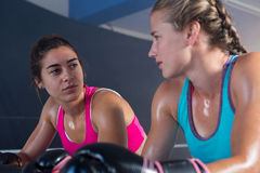 Low angle view of female boxers looking at each other. In boxing ring Royalty Free Stock Image