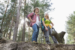 Low angle view of hiking couple standing on cliff in forest Royalty Free Stock Images